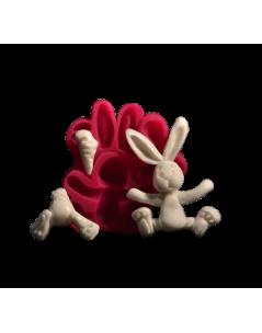 Tavşan Modelleme Silikon